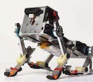 Can You Teach a Robot a New Trick